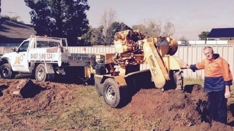About Albury Wodonga Tree Stump Removal Services